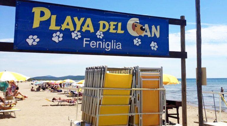 spiagge-per-cani-argentario